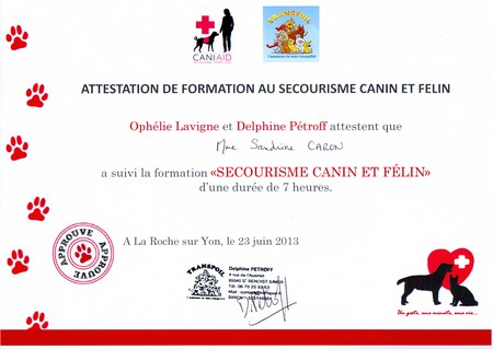 SC_attestation_secourisme_canin