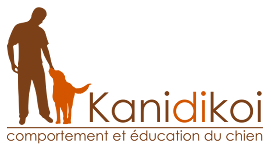 Kanidikoi | Comportement et éducation du chien